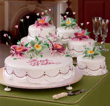 Wedding Cakes and Packages